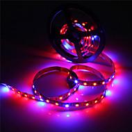 36W LED-kweeklampen 300 SMD 5050 lm Rood / Blauw Waterbestendig DC 12 V 1 stuks