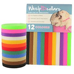 القطط الكلاب ياقة بطاقة ID قابل للسحبقابل للتعديل جامد قوس قزح Nylon