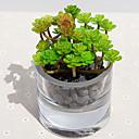 tanie Sztuczne kwiaty-Sztuczne Kwiaty 1 Gałąź Pasterski Styl Rośliny Bukiety na stół