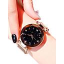 abordables Relojes de Mujer-Mujer Reloj de Pulsera Cuarzo Negro / Azul / Morado 30 m Resistente al Agua Reloj Casual Analógico damas Apariencia de Diamante Casual Moda - Morado Azul Oro Rosa