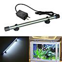 abordables Nouveautés Lampes LED-Poissons Aquarium Eclairage LED Blanc Durable Lampe à LED V Plastique