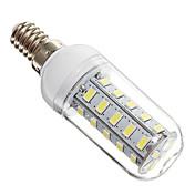 4W 350-400 lm E14 Bombillas LED de Mazorca 36 leds SMD 5730 Blanco Fresco AC 220-240V