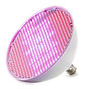 4000-5000lm E27 Growing Light Bulb 800 Cuentas LED SMD 3528 Azul Rojo 85-265V