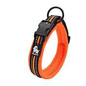 강아지 칼라 안티 슬립 반사 통기성 안전 조절 가능 솔리드 Net 나일론 블랙 오렌지 옐로우 퓨샤 블루