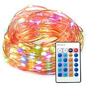 Lysslynger 100 LED Fjernkontroll Mulighet for demping 12V