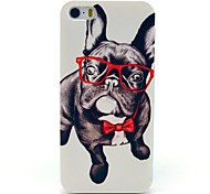 cheap -iPhone 7 Plus Glass Dog Animal Pattern Hard Case for iPhone 5/5S