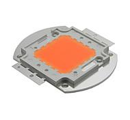 cheap -YWXLight® 100W High Power LED Chips Plant Growing Light Lamp DC 30 - 34V