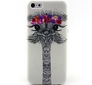 Недорогие -страуса картины ТПУ материал подшивать программный телефон случай для IPhone 5с
