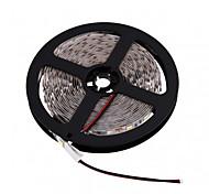 Z®ZDM 5M LED 300*5050 SMD DC12V Warm White / Cool White LED Strip Lamp 72W