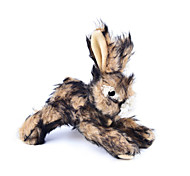 cheap -Cat Toy Dog Toy Pet Toys Plush Toy Squeak / Squeaking Rabbit Textile For Pets