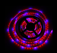 cheap -5M SMD5050 4Red1Blue 300LED IP65 Hydroponic Systems Led Plant Grow Light Waterproof Led Grow Strip Light(DC12V)