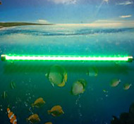 Aquarium LED Lighting Change Energy Saving LED Lamp 220V