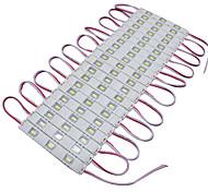 abordables -10w módulos de luz led 950-1150 dc12 v 3 m 60 leds blancos de alta calidad