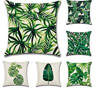 Недорогие -комплект из 6 тропических листьев листьев растений классический диван подушка покрытие хлопок / белье наволочка случае 45 * 45 см