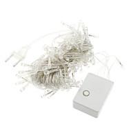 10M 100-LED White Light LED Strip Lamp (220V)