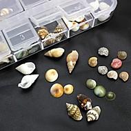 100db mix formák természetes shell kiegészítők nem tartalmaz doboz 3D Nail Art dekoráció