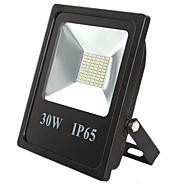 IP65 방수 스포트 라이트 램프 30w 60LED 5730smd 야외 정원이 투광 조명을 주도 (dc12-80v)