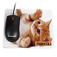halpa Hiiret & Näppäimistöt-Maikou hiirimatto kissa käyttää silmälasit pc matto tietokone toimittaa lisälaite