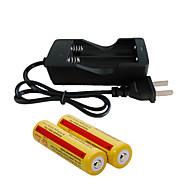 preiswerte Taschenlampen, Laternen & Lichter-Ladegerät LED - Sender 2000 lm inklusive Batterien und Ladegerät Wiederaufladbar Camping / Wandern / Erkundungen, Für den täglichen Einsatz, Radsport