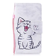 Case For Apple Ipod Touch5 / 6 Case Cover Card Holder Wallet with Stand Flip Pattern Full Body Case  Red-billed Cat Hard PU Leather