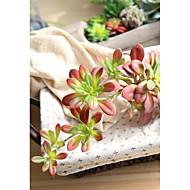 abordables Flores Artificiales-Flores Artificiales 1 Rama Estilo Simple / Modern Plantas / Flores eternas Flor de Pared