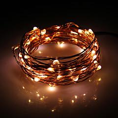 5M 50-LED Warm Wit koperdraad String Fairy Light met AC Adapter Set (100-240V)