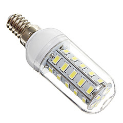 4W E14 Ampoules Maïs LED 36 diodes électroluminescentes SMD 5730 Blanc Froid 350-400lm 6000-6500K AC 100-240V