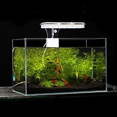 أحواض السمك إضاءةLED أبيض أزرق مع قواطع مصباح LED AC 100-240V