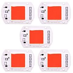 お買い得  LED-50w高出力LEDのコブチップ赤い光スマートIC AC 220V - DIY ledスポットライト投光器(5個)のための240v
