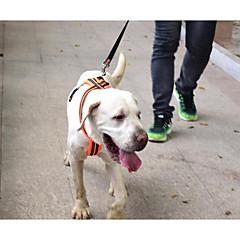 お買い得  犬用首輪/リード/ハーネス-犬用 ハーネス 調整可能 / 引き込み式 反射 高通気性 折りたたみ式 ソリッド ナイロン オレンジ グリーン