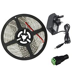お買い得  LED ストリングライト-HKV 5m フレキシブルLEDライトストリップ 300 LED 3528 SMD 1 x 2A電源アダプタ 温白色 / クールホワイト / レッド 防水 / カット可能 / 接続可 100-240 V