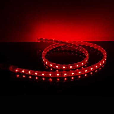 Waterproof 10W / M 5050 SMD Red Light LED Strip Lamp (220V, lengte instelbaar)