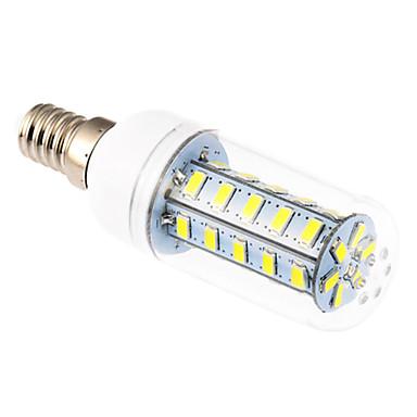 YWXLIGHT® 1pc 6 W 500-600 lm E14 LED Corn Lights T 36 LED Beads SMD 5730 Cold White 220-240 V