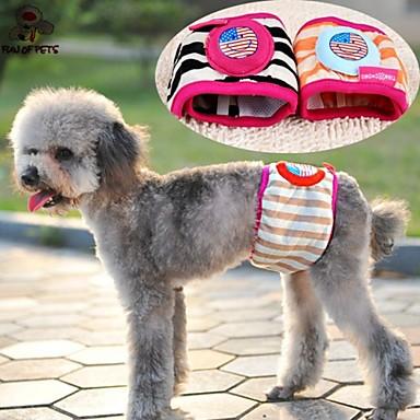 Γάτα Σκύλος Παντελόνια Ρούχα για σκύλους Καθημερινά Ριγέ Κινούμενα σχέδια Ουράνιο Τόξο Στολές Για κατοικίδια