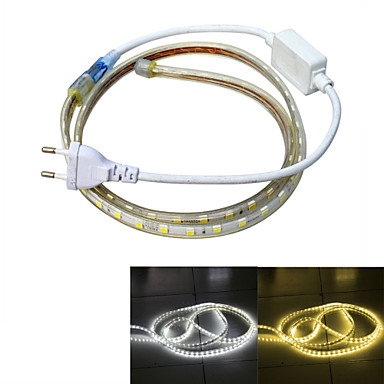 1m Power Supply 60 LEDs 5050 SMD Warm White / White Waterproof / Suitable for Vehicles 220 V / IP65