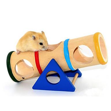 Knaagdieren Hamster Hout Speelgoed Regenboog