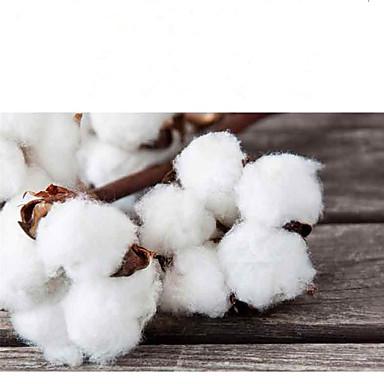 قط كلب البلوزات ملابس الكلاب جماجم أبيض فوشيا شبكة الصوفية كوستيوم للحيوانات الأليفة كاجوال/يومي