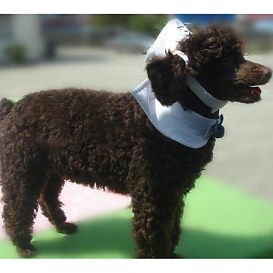 Câine Cravată/Papion Îmbrăcăminte Câini Casul/Zilnic Marinar Alb