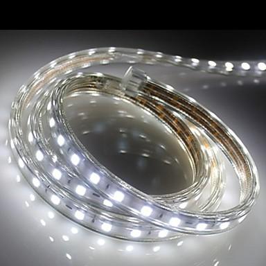 60 LED 따뜻한 화이트 화이트 블루 방수 AC220 AC 220V