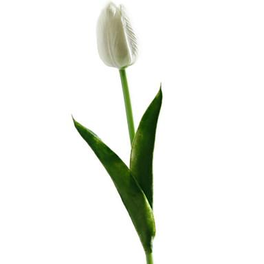 زهور اصطناعية 1 فرع كلاسيكي الحديث المعاصر أزهار التولب أزهار الأرض