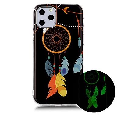 voordelige iPhone-hoesjes-hoesje Voor Apple iPhone 11 / iPhone 11 Pro / iPhone 11 Pro Max Glow in the dark / Ultradun / Patroon Achterkant Veren TPU