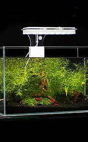 Aquarium LED Lighting White Blue With Switch(es) LED Lamp AC 100-240V