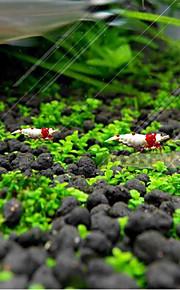 Dekoracja Aquarium Roślina wodna Mini Dekoracja Biżuteria