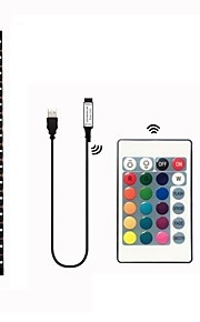 2m Set luci 60 LED SMD5050 1 telecomando da 24Keys Colori primari Impermeabile / Accorciabile / Decorativo 5 V 1 set