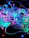 String Lights 100 LEDs RGB Color-Changing 110V