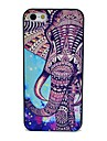 Speical Elephant Pattern Hard Case for iPhone 5/5S