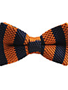 Unisex Party Work Basic Bow Tie - Striped