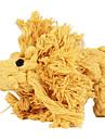 Köpekler Oyuncaklar Evcil Hayvan Oyuncakları Çiğneme Oyuncağı İp / Aslan Dokuma Sarı