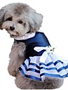 Costume / Robe-Chat / Chien-Ete-Bleu-Mariage / Cosplay / Anniversaire / Noel / Nouvel An / Raye / ModeClassique / Rayure / Nautique /