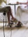 Ablakfólia és matricák Dekoráció Egyszerű Virágos PVC Ablak matrica